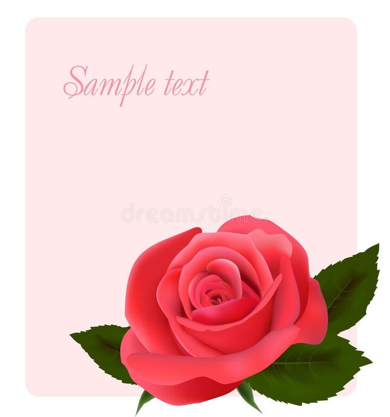 Karte mit schönem Rosa stieg. lizenzfreie abbildung