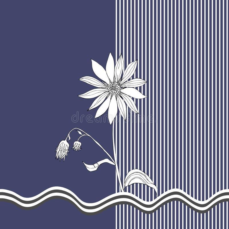Karte mit Schwarzweiss--Topinambur auf dunkelblauem und gestreiftem Hintergrund Blumen und Insekt vektor abbildung