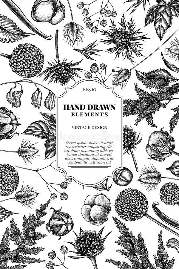 Kartenentwurf mit Schwarzweiss-Astilbe, Craspedia, blauer Eryngo, lagurus, Baumwolle, Gypsophila lizenzfreie abbildung