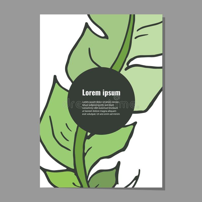 Kartenschablone mit dekorativer grüner Feder für Plakat, Flieger, Fahneneinladungen lizenzfreie stockbilder