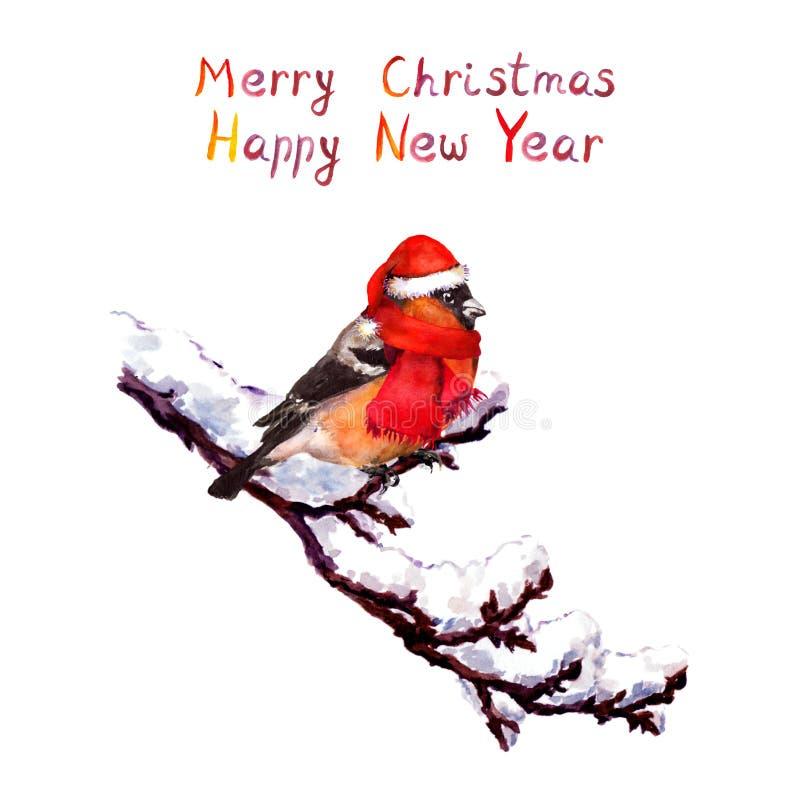 Kartka bożonarodzeniowa - ptak w czerwonym kapeluszu przy gałąź z śniegiem akwarela royalty ilustracja