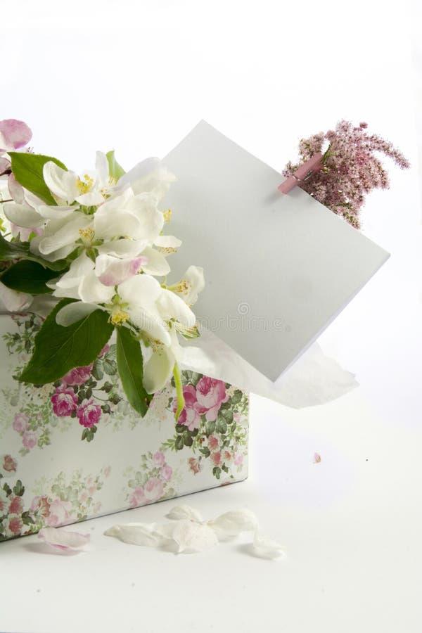 Kartka z pozdrowieniami nad dekoracyjnym pudełkiem biali kwiaty obrazy royalty free
