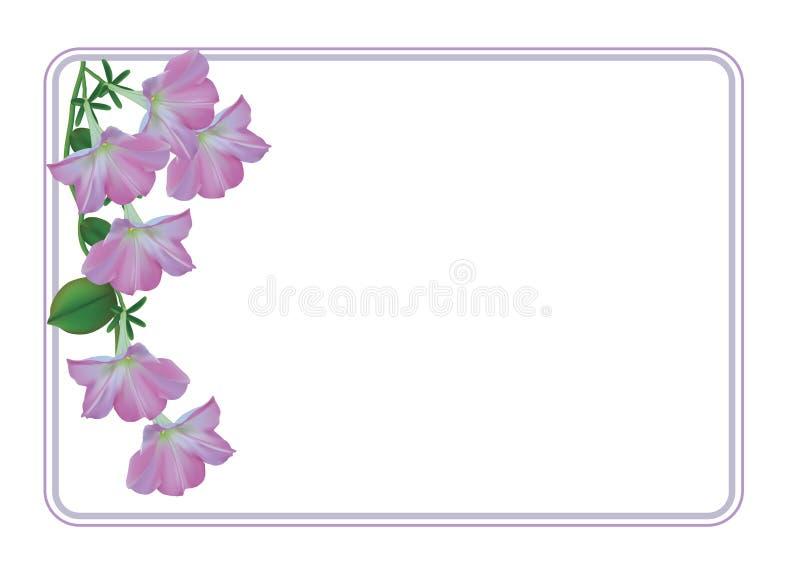 Kartka z pozdrowieniami z światłem - różowe petunie royalty ilustracja