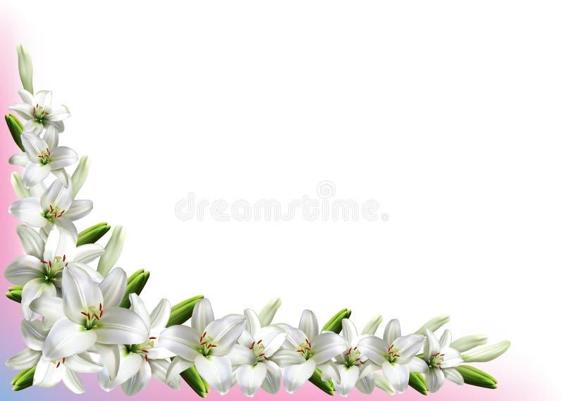 Kartka z pozdrowieniami z białymi lelujami ilustracja wektor