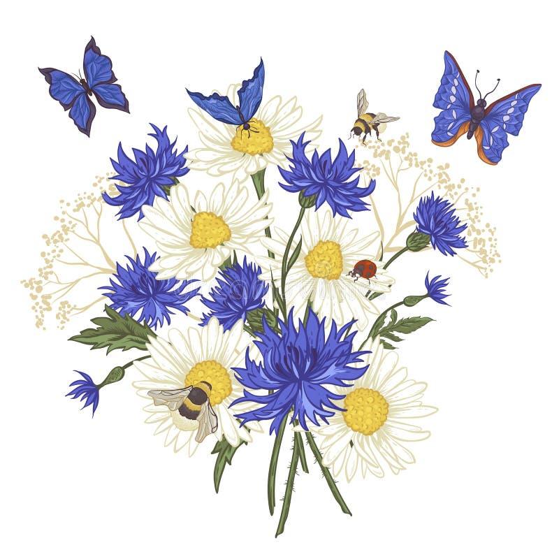 Kartka Z Pozdrowieniami z Kwitnącym Chamomile ilustracja wektor