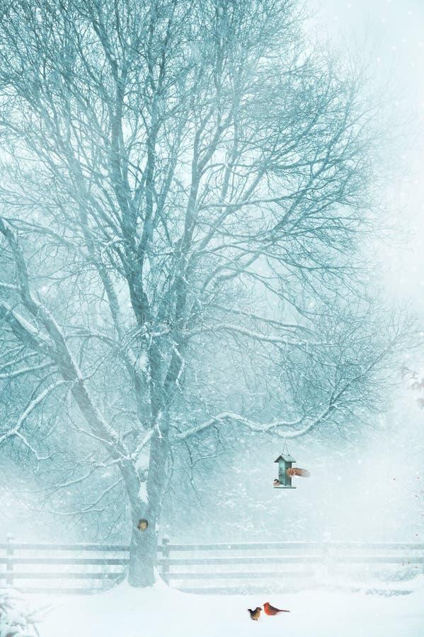 Kartki bożonarodzeniowa tło. zdjęcie royalty free