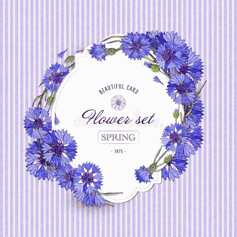 Kartki z kwiatów winylowych z niebieskimi i niebieskimi kwiatami. Kwiaty polne i łąkowe. Tło romantyczne. Ilustracja wektorowa royalty ilustracja
