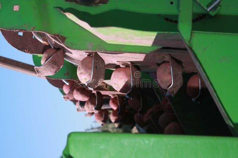 Download Kartoffel stockbild. Bild von mähdrescher, landwirtschaft - 9098777