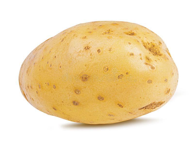 Kartoffel getrennt auf Weiß lizenzfreies stockbild