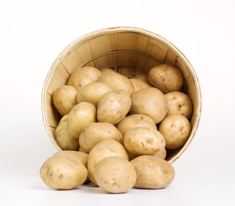 Kartoffel-Korb stockfotografie