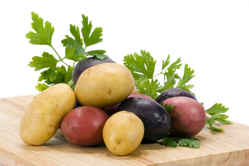Kartoffeln 3 Farben lizenzfreies stockbild