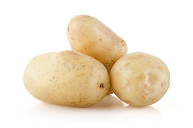 Kartoffeln auf Weiß stockfotos