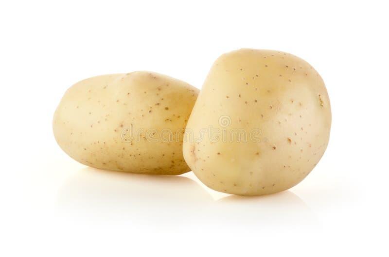 Kartoffeln auf Weiß lizenzfreie stockfotos