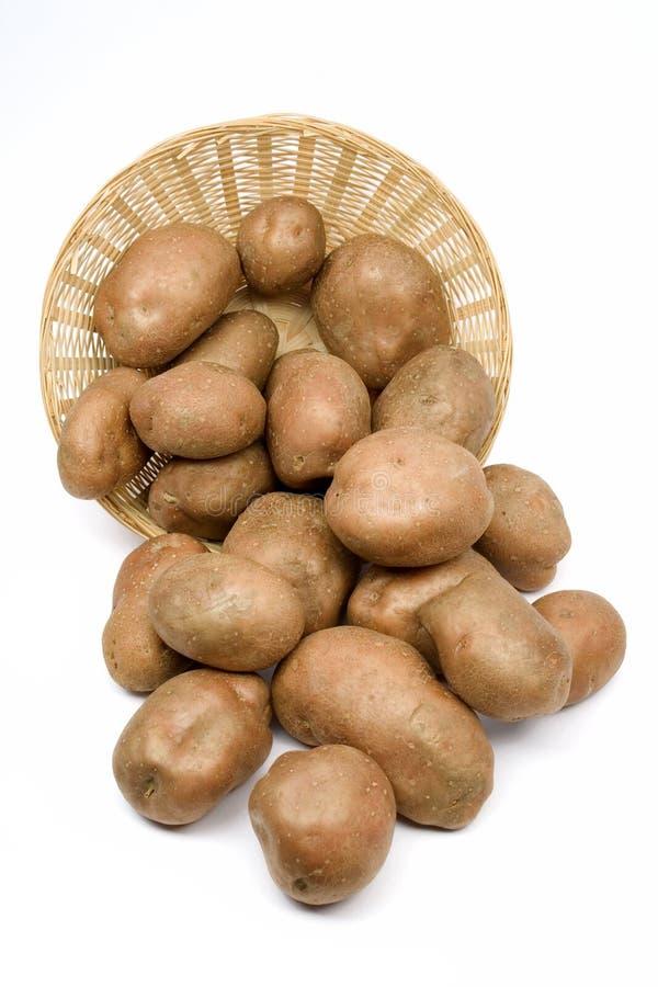 Kartoffeln in einem Korb lizenzfreie stockbilder