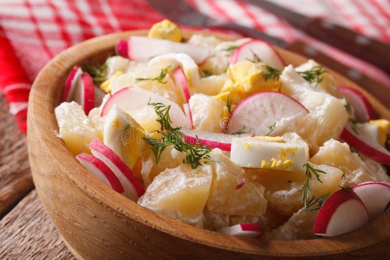 Kartoffelsalat mit Rettich und Einahaufnahme auf einer Platte horizonta stockfotos