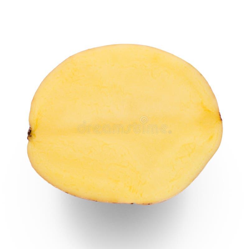 Kartoflana połówka obraz royalty free