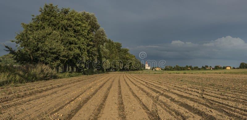 Kartoflany brązu pole blisko Pocaply wioski zdjęcia royalty free