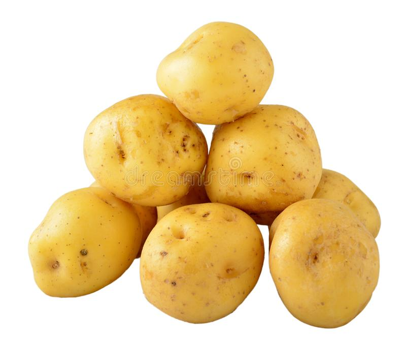 Kartoflany creole nad bielem obraz royalty free
