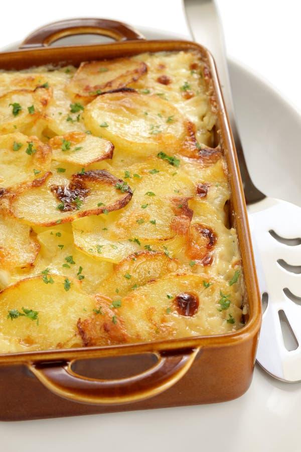 Kartoflany gratin obrazy royalty free