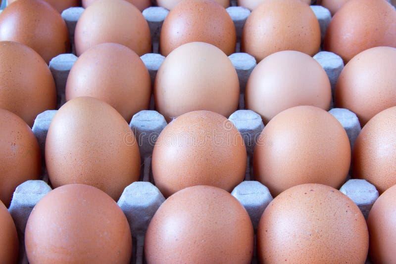 Kartonhoogtepunt van eieren stock foto's