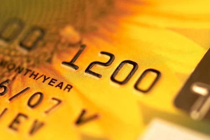 karty bankowe makro obraz royalty free