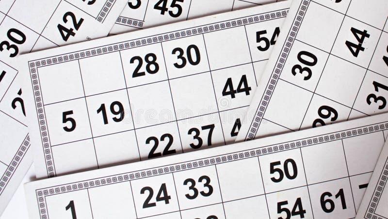Karty i bary?ki dla Rosyjskiej loteryjki bingo gry na bia?ym tle ilustracja wektor