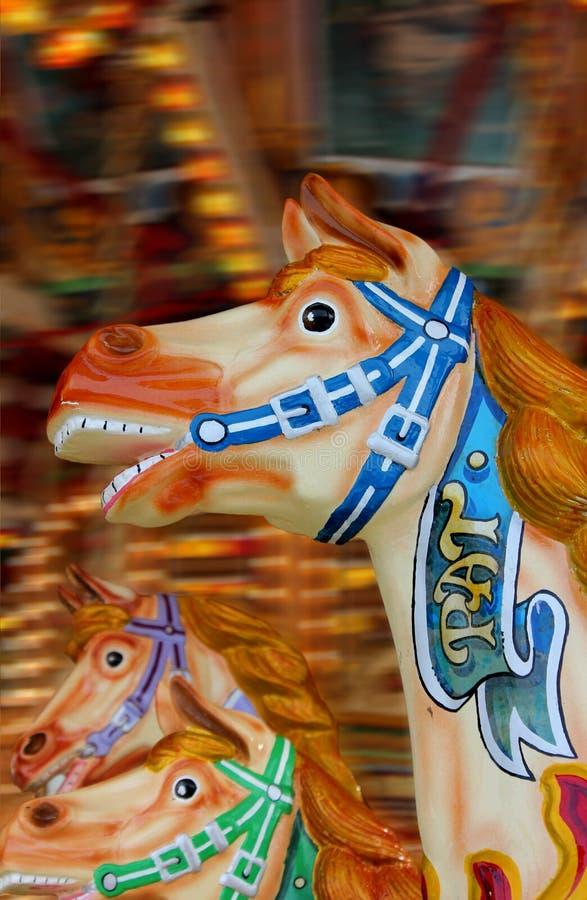karusellhästar royaltyfri foto