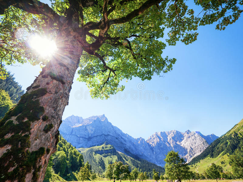 Karwendel fotografie stock libere da diritti