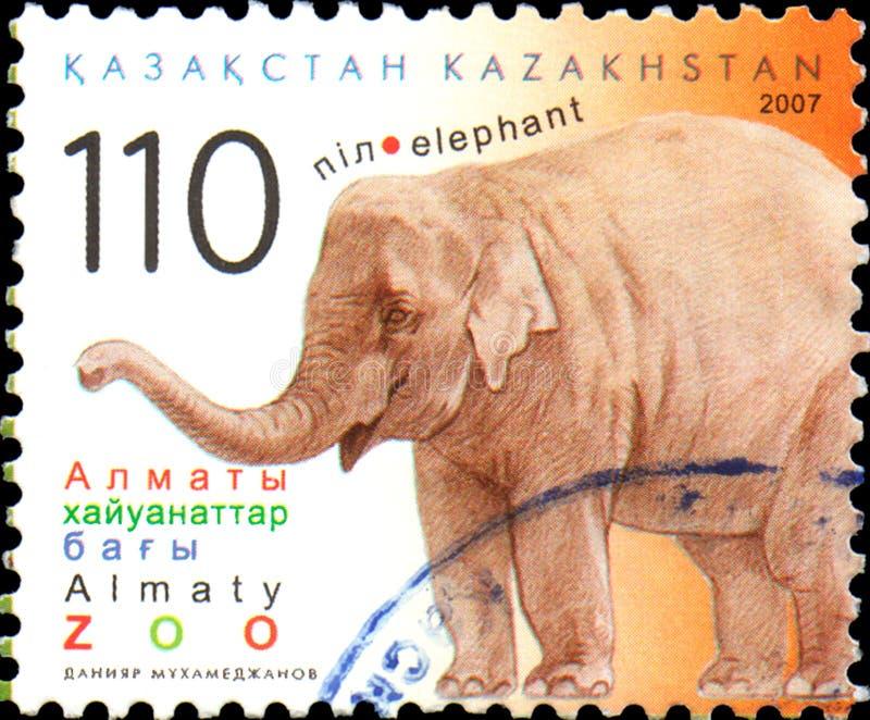 KASACHSTAN - CIRCA 2007: Der Poststempel, der in Kasachstan gedruckt wird, zeigt Elefanten Almaty-Zoo lizenzfreies stockfoto