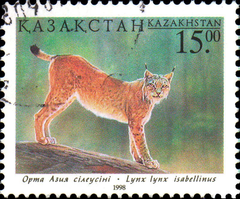 KASACHSTAN - CIRCA 1998: Der Poststempel, der in Kasachstan gedruckt wird, zeigt Luchs Fauna von Kasachstan lizenzfreies stockbild