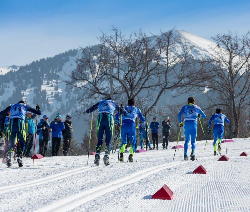 KASAKHSTAN ALMATY - FEBRUARI 25, 2018: Amatörmässiga längdlöpningkonkurrenser av ARBA skidar festen 2018 deltagare royaltyfri fotografi