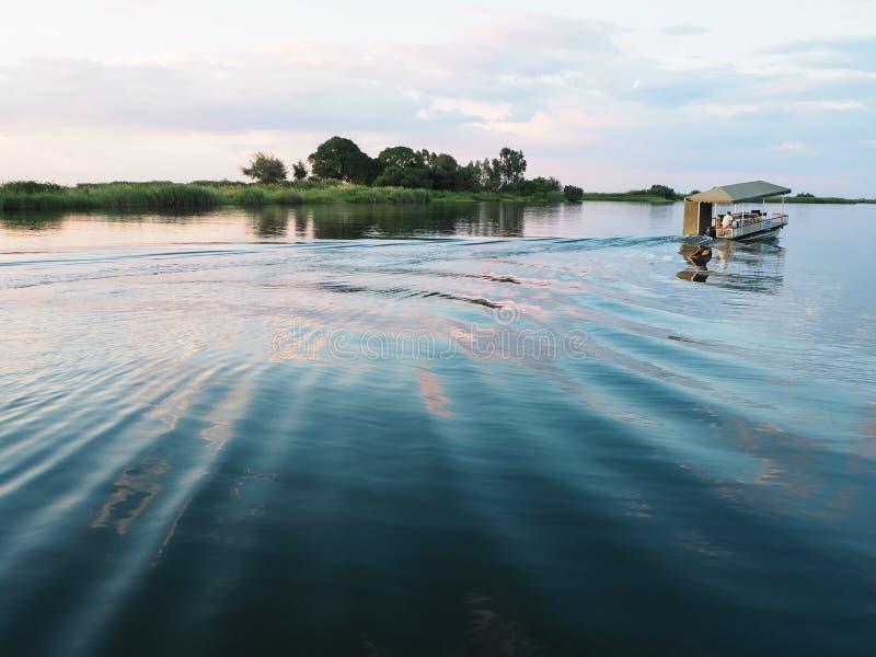 Kasane, Botswana - 7 dicembre 2016: Driv locale non identificato dell'uomo immagini stock libere da diritti