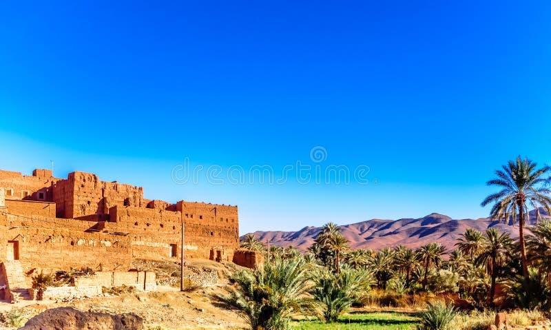 Kasbah Caids e palma agrden ao lado de Tamnougalt no vale de Draa - imagem de stock