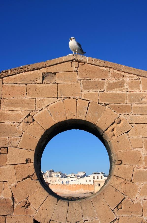 Kasbah e Skala de Marrocos Essaouira fotografia de stock royalty free