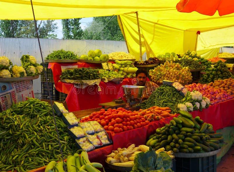 KASCHMIR, INDIEN - 28. APRIL 2018: Viele Obst und Gemüse lizenzfreies stockbild