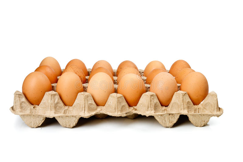 kaset pudełkowaci jajka zdjęcia royalty free