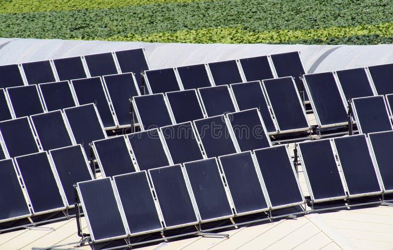 kasetonuje słonecznego zdjęcia stock