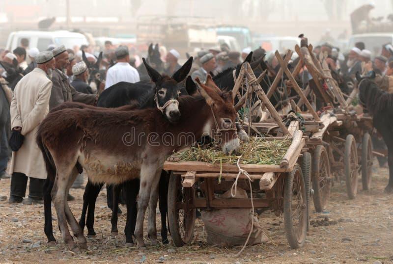 kashgar marknad sunday royaltyfria foton