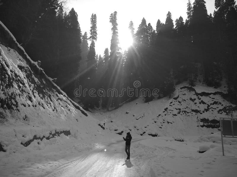 Kashmiri arkivbild