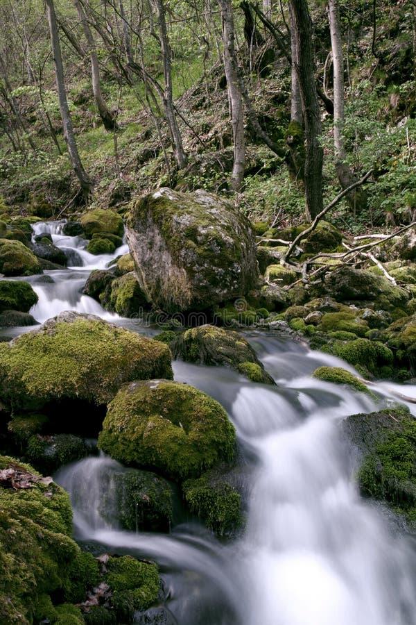 Kaskad Bigar. Nationalparken Cheile Nerei RUMÄNIEN arkivfoton