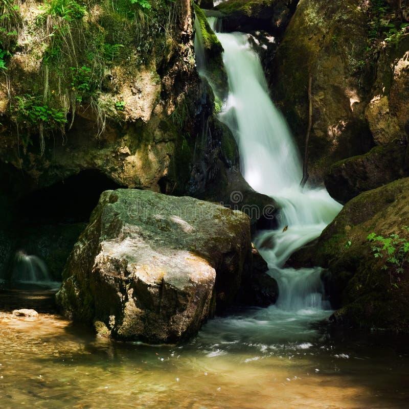 Kaskad med mossy rocks i skog royaltyfria foton