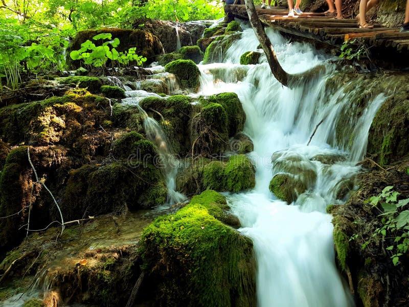 Kaskada siklawy na Plitvice jeziorach, Chorwacja obraz royalty free