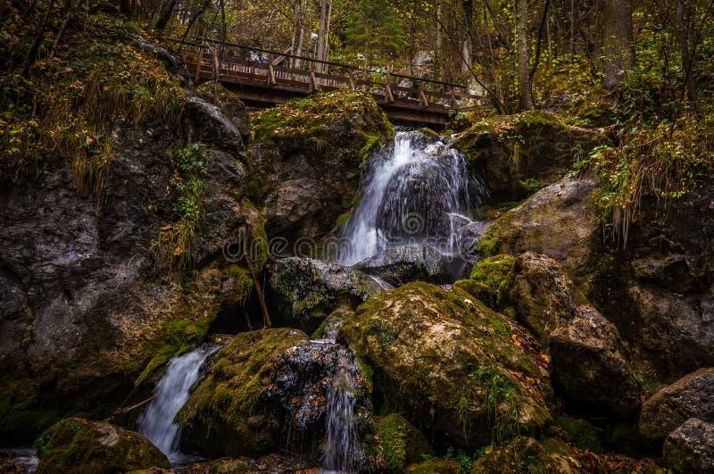 Kaskaden über moosige Felsen bei Myrafalle mit Holzbrücke im Hintergrund stockbild