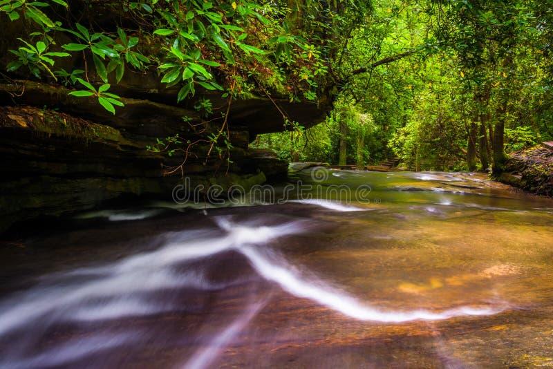 Kaskaden auf Carrick Creek, bei Tisch Felsen-Nationalpark, Süd-Carol stockbild