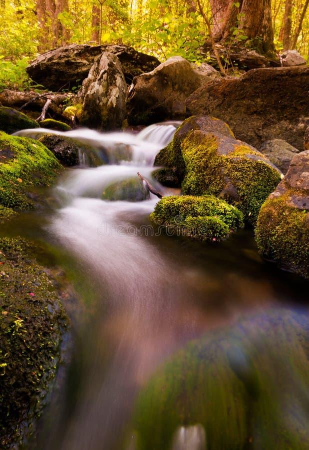 Kaskaden auf Südfluß, Nationalpark Shenandoah, Virginia lizenzfreie stockfotos