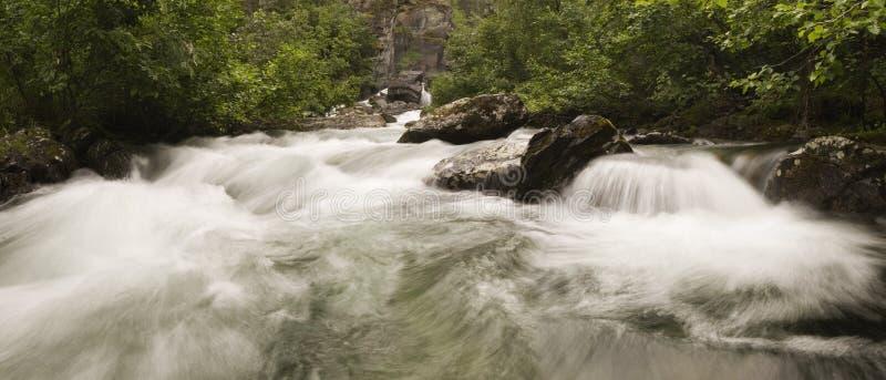 Download Kaskaden Faller Frihetvatten Fotografering för Bildbyråer - Bild av vegetation, flöde: 983709