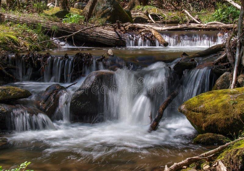 Kaskaden unterhalb der Nebenfluss-der F?lle der Witwe am Steingebirgsnationalpark stockfotografie