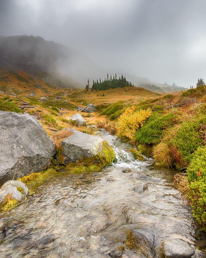 Kaskadenstrom, Märchenland-Spur, Berg Rainier National Park, WA stockbild