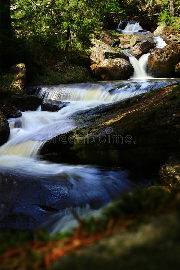 Kaskadenwasserfälle im Gebirgswald stockfotografie