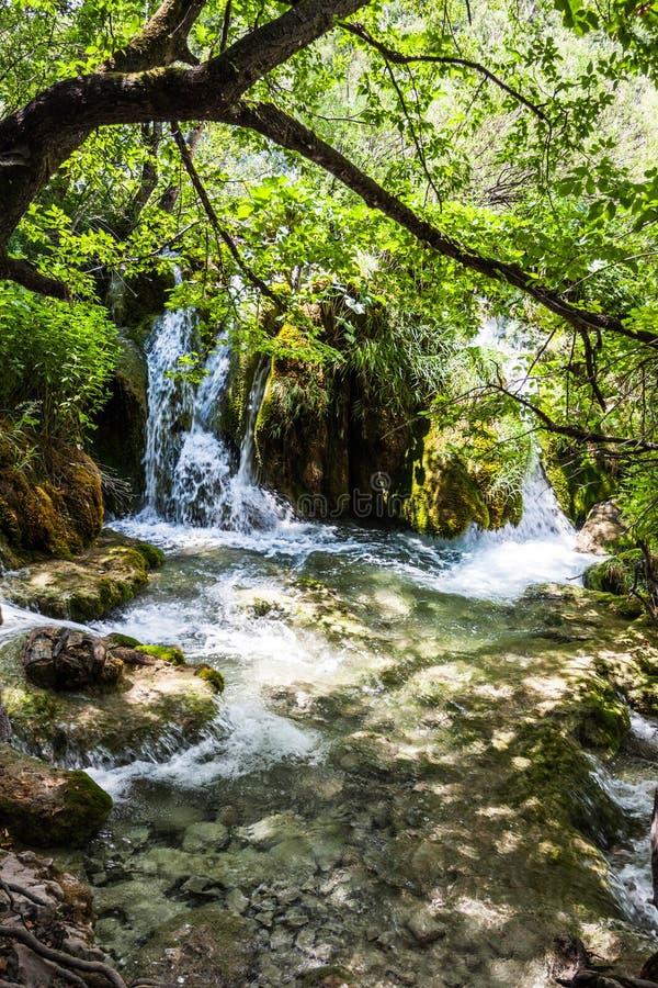 Kaskadenwasserfälle unter den Baumasten Plitvice, Nationalpark, Kroatien stockfotos